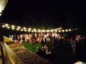festoon picnic